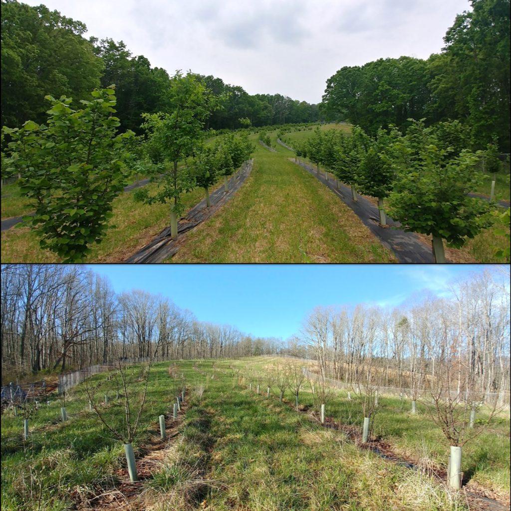 Farm and Crop Care Asheville
